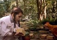 Image Le Magicien d'Oz II (Return to Oz)