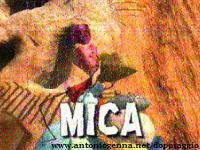 Image Mica le caillou pèlerin
